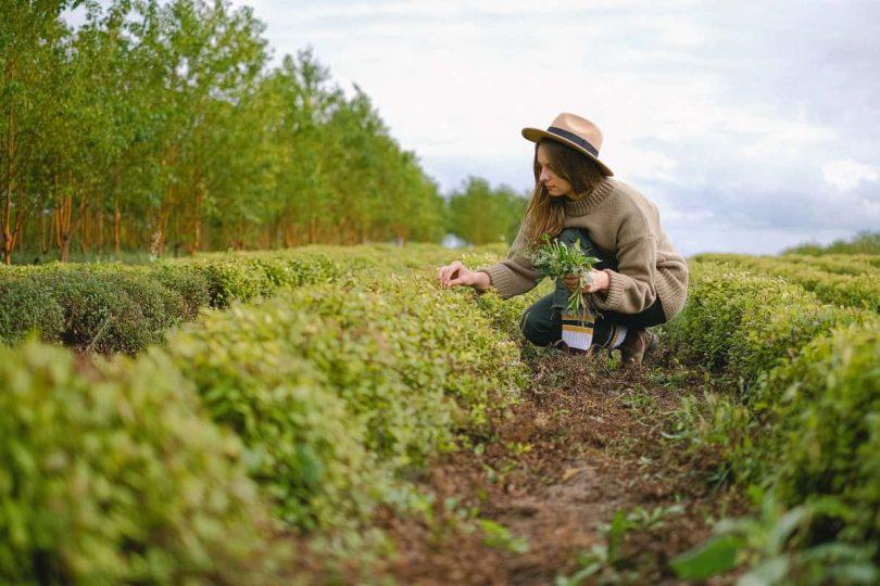 El papel de la mujer en el desarrollo rural